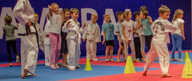 Taekwondo czy karate?
