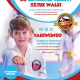 sztuki walki wrocław judo taekwondo boks mma