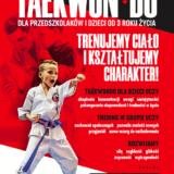 sztuki walki taekwondo wrocław, twardogóra, gniechowice, dobroszyce